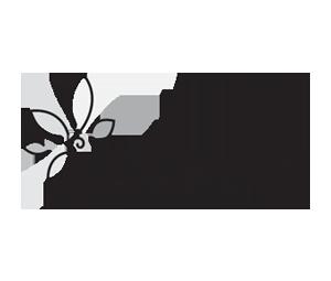 Lakewood Center Mall