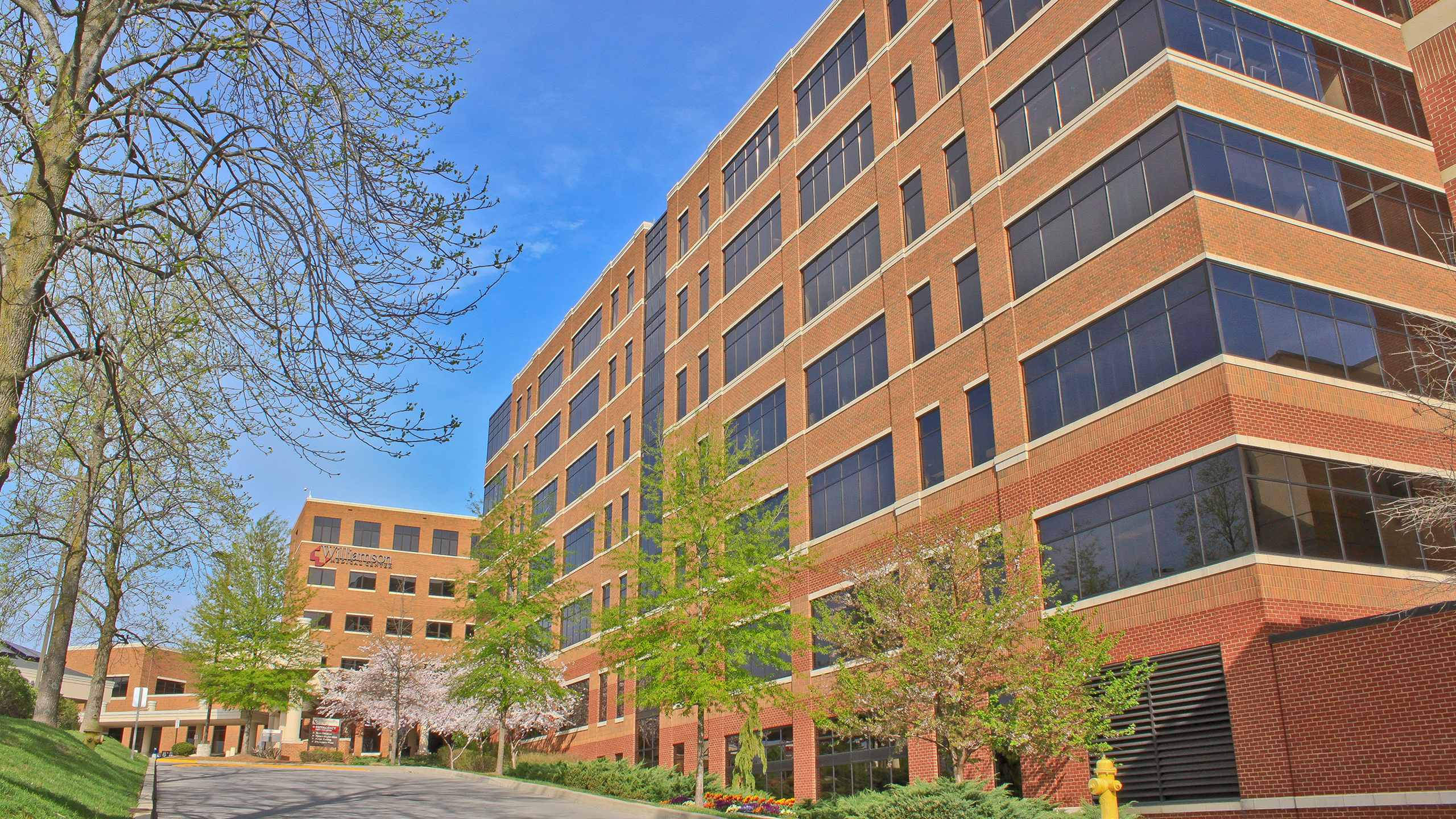 Williamson Medical Center