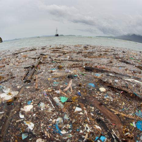 Discarded plastic has washed up near a remote island