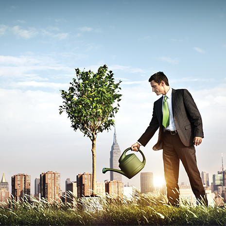 businessman watering profit tree in from of cityscape