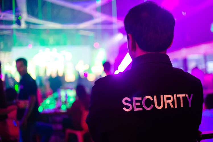 Security Guard at Entertainment Event